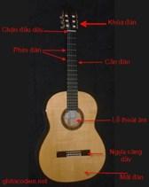 Hướng dẫn học đàn Guitar Acoustic
