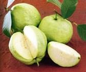 Các loại trái cây giàu vitamin C nhất trong các loại hoa quả