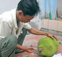 Cách bảo quản trái cây tươi lâu hơn 5 tháng
