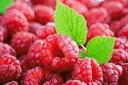 Các loại trái cây trị ho: Quả mâm xôi