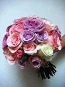 Các loại hoa màu tím kiêu sa: Hoa hồng tím