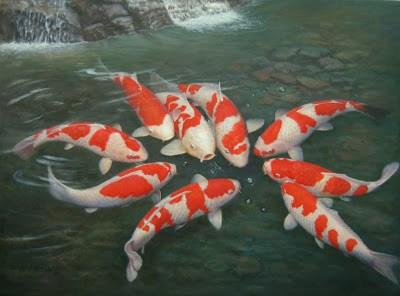 Đặc điểm sinh học cá chép Nhật, Nguồn: TT Khuyến Nông tp. HCM. I. Tổng quan Hiện nay, trên thị trường cá cảnh tại TP. Hồ Chí Minh có rất nhiều chủng loại,