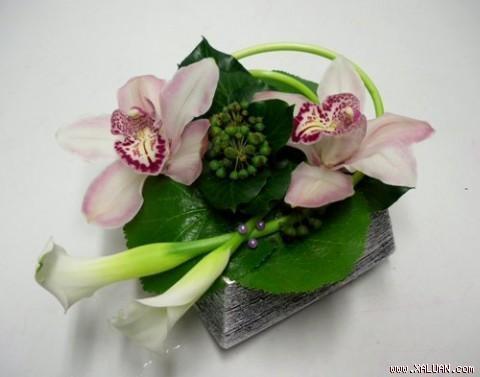 Cách cắm lẵng hoa lan đẹp và đơn giản. Những mẫu hoa lan cắm lẵng đẹp nhất. Đơn giản mà sang trọng: Khác với vẻ sang trọng khi được cắm trong các lẵng