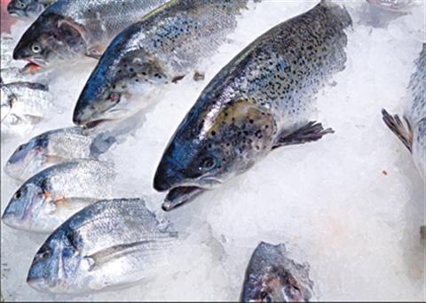 Cách bảo quản thực phẩm đông lạnh chuẩn không cần chỉnh