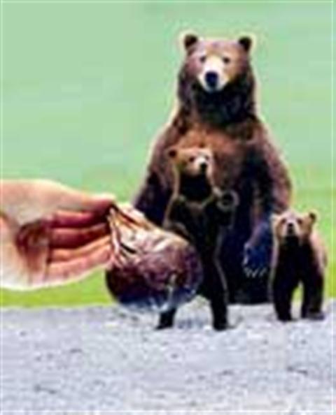 Tác dụng chữa bệnh của mật gấu