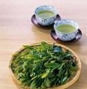 Cách uống trà xanh giảm cân nhanh rất tốt cho sức khỏe