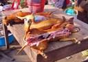 Kinh nghiệm nuôi chó lấy thịt hiệu quả cao