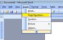 Cách đánh số trang ngắt quãng trong word 2007