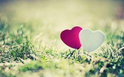 Tình yêu của xử nữ và ma kết