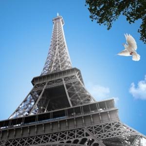 Bạn muốn học tiếng Pháp nhưng không biết phải bắt đầu như thế nào? Hãy tham khảo các cách học từ vựng sau để lựa chọn cách học hiệu quả nhất nhé!