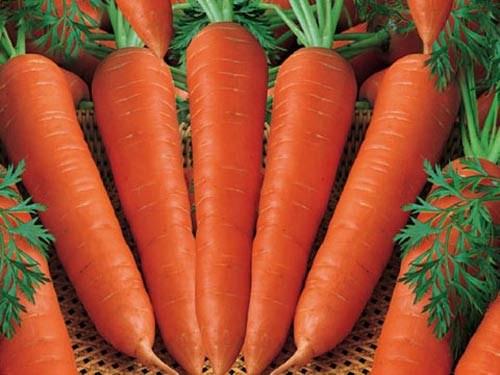 Chữa táo bón sau khi sinh cực tốt bằng cà rốt