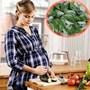 Bà bầu ăn rau ngót dễ sảy thai