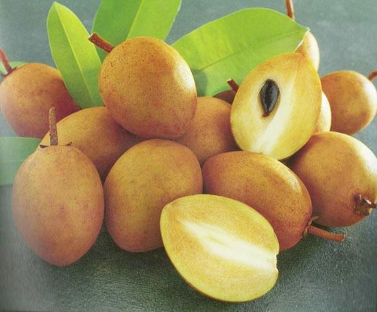 Hồng xiêm là một loại trái cây thơm ngon, dễ ăn, có nhiều giá trị dinh dưỡng và có tác dụng làm thuốc chữa bệnh cho các bà bầu. Hồng xiêm rất quen thuộc và