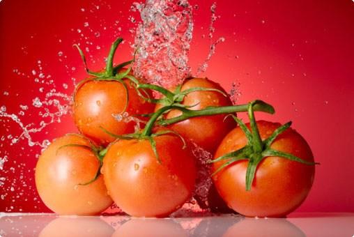 Hãy sở hữu những mẹo hay dưới đây để có thể bảo quản được cà chua tươi ngon và dùng quanh năm.  Cà chua có hàm lượng Vitamin A cao, được sử dụng nhiều vào