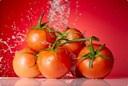 Phương pháp bảo quản Cà chua tươi ngon dùng quanh năm