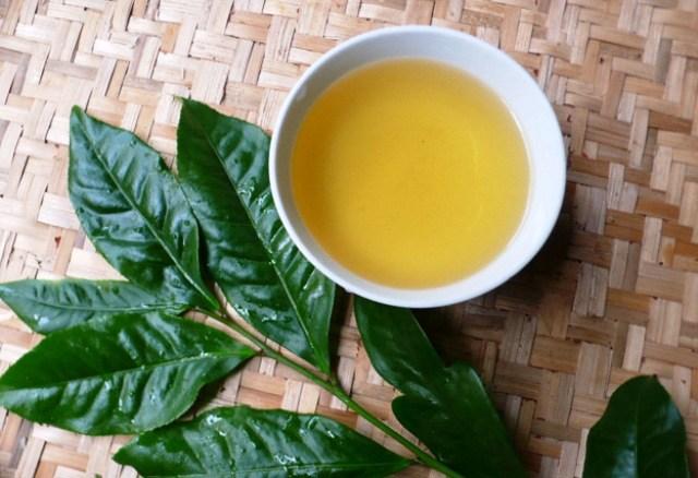 Trị mụn bằng lá trà xanh đúng cách, hiệu quả